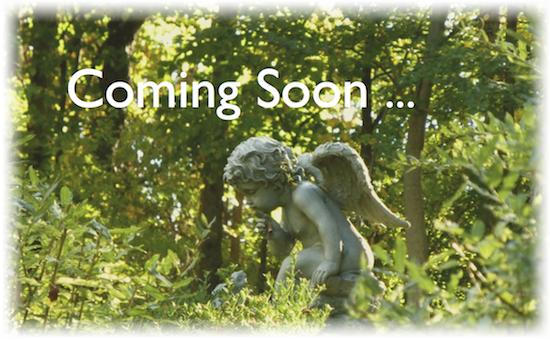 coming_soon2_1021