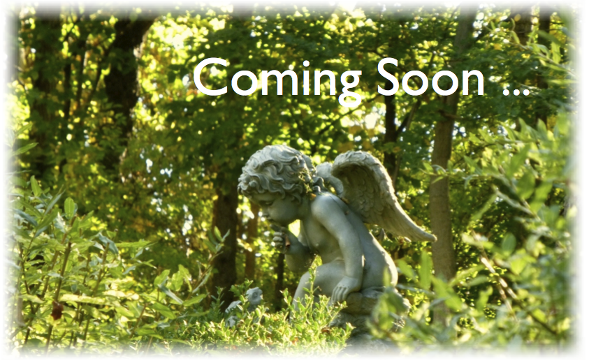 coming_soon_1018